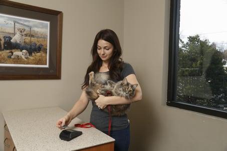 Pet Parent Payment